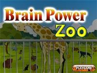 Brain Power Zoo